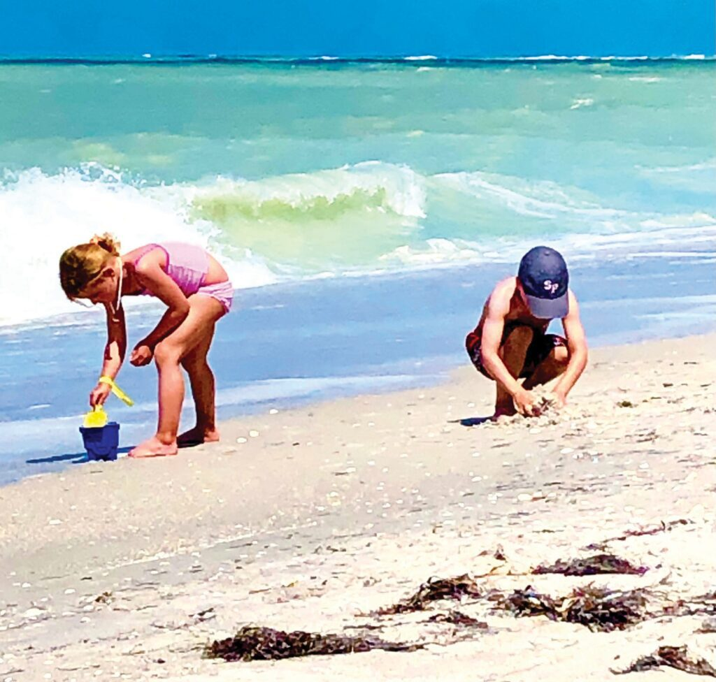 South Seas Island Resort offers plenty of shelling on Captiva Island. But guests also can enjoy its annual Yacht Rock Weekend, set for Sept. 3-5, with live music, game, food and more.
